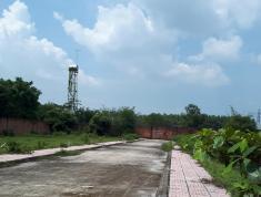 Cần bán lô đất rẻ nhất bưng cơ lộc an, thổ cư,sổ hồng riêng cạnh bên KCN Lộc An