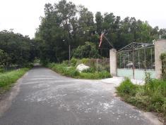 Bán trang trại khu nghỉ dưỡng gần cảng cái mép, tx phú mỹ