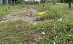 Chính Chủ bán đất vị trí đẹp tại Quận 9, Tp.HCM Diện tích: 1250m²
