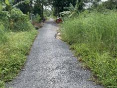 Cần bán đất Ấp Tân Hiệp, huyện Long Hồ, tỉnh Vĩnh Long.