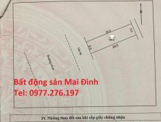 Gia chủ cần bán 02 lô đất đường hàng dừa khu dân cư số 3 huyện Hiệp Hòa,Bắc Giang