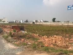 Bán đất KDC Tân Đô, xã Đức Hòa Hạ, huyện Đức Hòa, tỉnh Long An
