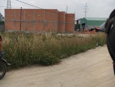 Bán đất sổ riêng ngay chợ Minh Phát Q12, cách Gò Vấp chỉ 5 phút 26tr/m2, thổ cư 100%