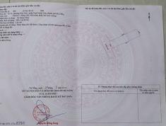 Chính chủ cần bán 2 lô đất khu dân cư Thị An, Phường Hòa Quý, Quận Ngũ Hành Sơn, Tp. Đà Nẵng