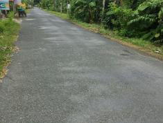 Mặt Tiến 13,5m lộ 6.5m Ngay Khu Dân Cư Đông Phú Châu Thành Tỉnh Hậu Giang Giá Chỉ 1 Tỷ 300 Triệu