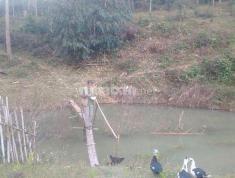 Bán đất dọc quốc lộ 24 Thị trấn Măng Đen, cách Đức Mẹ Măng Đen 1km5