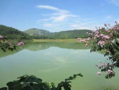 Chuyển nhượng 8 ha đất lằm trang trại tại lương sơn tỉnh hòa bình