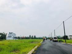 Mua đất tặng 1 cây vàng ở KDC Phú An Thạnh Bến Lức-LA đã có sổ 100%,Giá: 1.1 tỷ(100m) LH:0906910193
