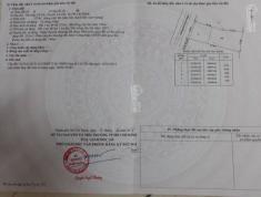 Cần bán trong tuần lô đất mặt tiền đường đỗ đình NHÂN. DT 12x33m thổ cư 233m.