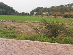 Gia chủ cần bán 2 lô đất khu dân cư mới bờ đa - An Lạc - Chí Linh - Hải Dương