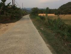 Bán lô đất thổ vườn diện tích 15ha ở Xã Tiên Hoàng Huyện Cát Tiên