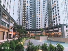 Bán căn hộ Richstar, DT 65m2, 2PN, Full NT, giá 2,7 tỷ.