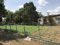 Bán 191.2m2 đất vị trí đẹp, gần DT765 xã Xuân Tây, Cẩm Mỹ, Đồng Nai