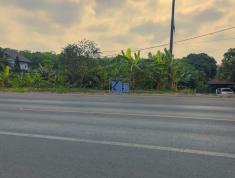 Đất mặt tiền QL20, xã Quang Trung, Thống Nhất, Đồng Nai (0834398679)
