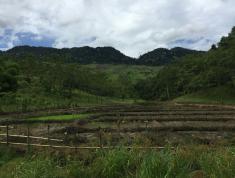 Chuyển nhượng 80 ha đất tại cao tốc tỉnh hòa bình