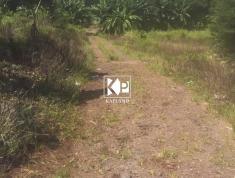 Thửa đất 9,2 sào có trang trại vịt tại Hàng Gòn, TP Long Khánh (0834398679)