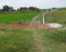 Chính chủ cần bán 2 lô đất xã Thạnh Đức, Huyện Bến Lức, Long An