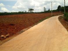 Bán lô đất 14x40m ở Thôn Đồng Lạc 4, Xã Đinh Lạc, Huyện Di Linh