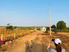 Đất vườn du lịch Bình Thuận, Gần KDL Bàu Trắng. 100% lợi nhuận. Chỉ từ 60.000/m2 bao sang tên công