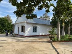 Chính chủ nhờ bán nhà vườn nông dân tại Bàu Sen, Xàng Bang