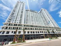 Thanh toán 381 triệu- Sở hữu ngay căn hộ Xanh Ecolife Riverside Quy Nhơn