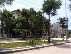 Bán Đất Chính Chủ Tình Quang, Giang Biên, Lô góc 40m2, 2 Mặt thoáng, 1.2 tỷ, 0988312321