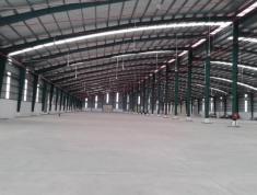 Cho thuê kho xưởng 1000m2, 1300m2 và 5000m2 KCN Cát Lái Quận 2